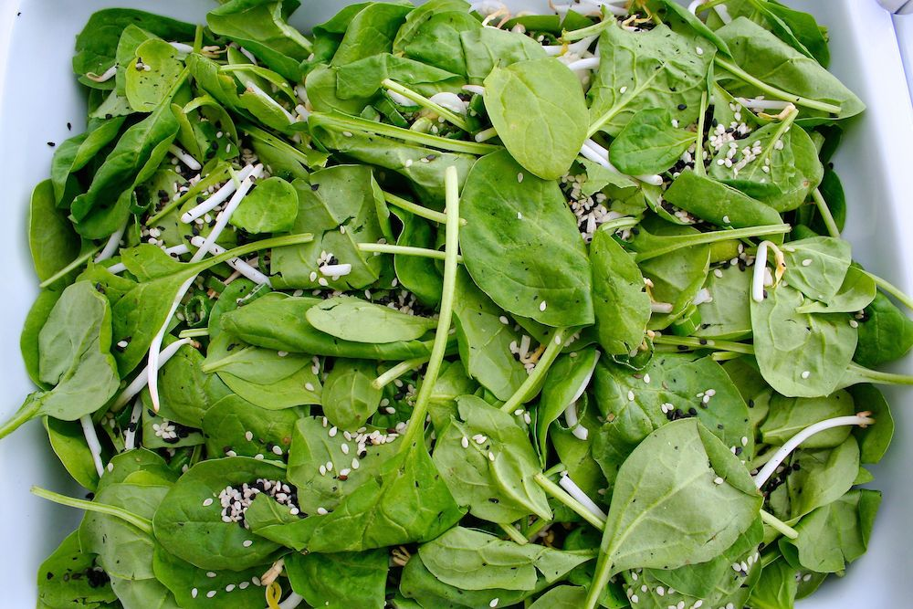 asia-salat-spinat-sesam(C)vockenhuber
